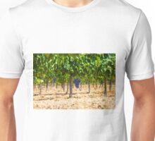 Red grapes at Saint Tropez vineyard, France Unisex T-Shirt