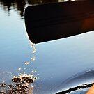 Canoe Paddle in Sunlight by Skye Ryan-Evans