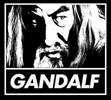Obey Gandalf by JDIB