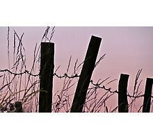 Sunrise in the country with barbed wire Photographic Print