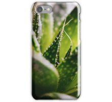 F R E S H iPhone Case/Skin