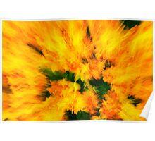 flower rush Poster
