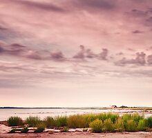 Baltic Sea, Poel, Germany by novopics