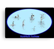 Hattah Lakes Canvas Print