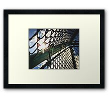 Sun Through a Baseball Fence Framed Print