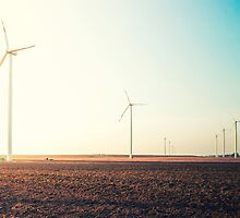 field with wind power by novopics