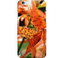 Day Lily After Rain iPhone Case/Skin