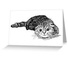 Scared Cat Greeting Card