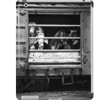 The Last Journey iPad Case/Skin