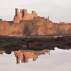 Tantallon reflection by Christopher Cullen