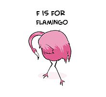 F is for Flamingo Photographic Print