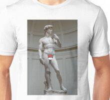 Poké ball David Unisex T-Shirt
