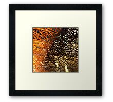 Oh the Tangled Web we Weave Framed Print
