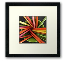 Bucket of Color Framed Print