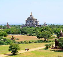 Carriage near the temples at Bagan, Myanmar by morariu