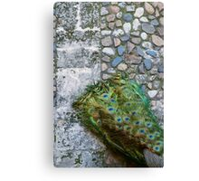 Cape Sold Separately  Canvas Print