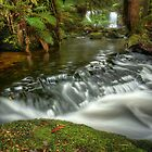Horseshoe Falls, Mount Field NP by Kevin McGennan