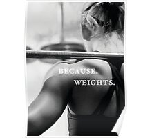 Because Weights Poster