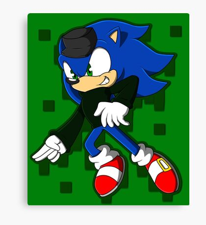 Clever Sonic Canvas Print