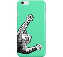 Flying Cat iPhone Case/Skin