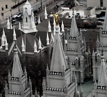SLC LDS Temple From Above by LaRae55