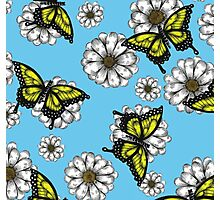 Daisy and Butterflies Pattern Photographic Print
