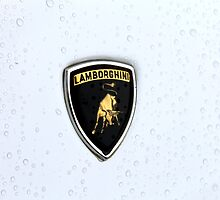 Lamborghini badge (Raging bull) by Tom Gregory