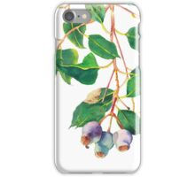 Eucalyptus branch with gumnuts - watercolour iPhone Case/Skin