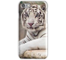 Blancus Panthera tigris tigris iPhone Case/Skin