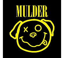 PUG FUNNY MULDER Photographic Print