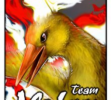 Team Valor!!!! by Anarchpeace