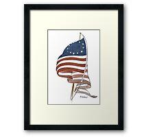 United States 1776 flag Framed Print
