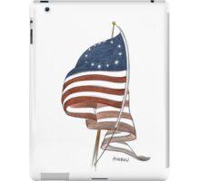 United States 1776 flag iPad Case/Skin