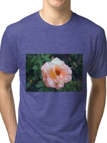 Beautiful delicate pink rose on green leaves background. Tri-blend T-Shirt