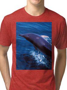 Simply fun Tri-blend T-Shirt