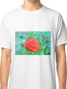 Red rose on natural background with green leaves. Classic T-Shirt