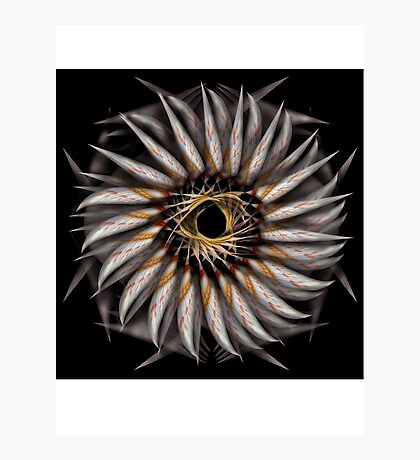 """Feathered Flower © Brad Michael Moore 2008"" Photographic Print"
