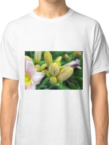 Flowers in the garden. Macro on yellow buds. Classic T-Shirt