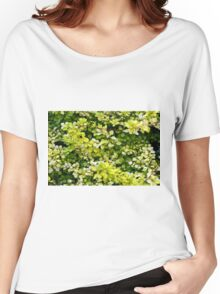 Natural background with small yellow green leaves. Women's Relaxed Fit T-Shirt