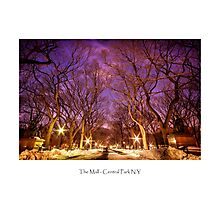 The Mall in Central Park Photographic Print