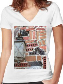 Brick Light Women's Fitted V-Neck T-Shirt
