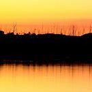 Wivenhoe Sunset 1 by Truenature