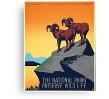 National Parks - Vintage Travel Poster Canvas Print