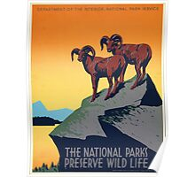National Parks - Vintage Travel Poster Poster