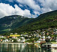 Norwegian nature by Anastasia E