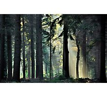 Going out on a lightful summer morning Photographic Print