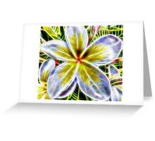 Single Frangipani Fractal  Greeting Card