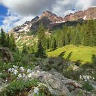 Maroon Bells Images - Columbine and the Bells on a July Morning 1 by RobGreebonPhoto