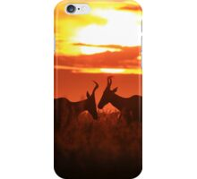 Red Hartebeest - Sun Symmetry - African Wildlife iPhone Case/Skin