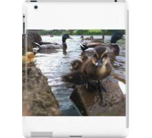 Delightful Ducks! iPad Case/Skin